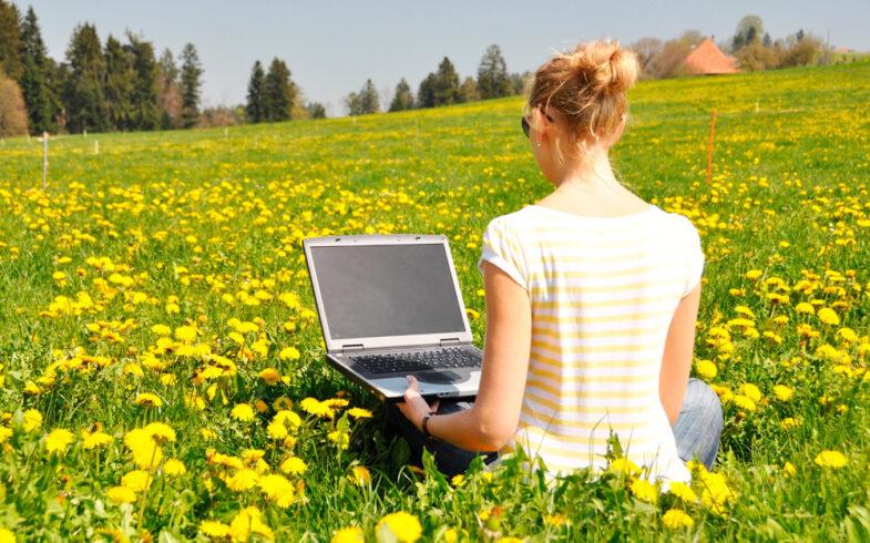 Садоводческие товарищества переходят в цифровой формат