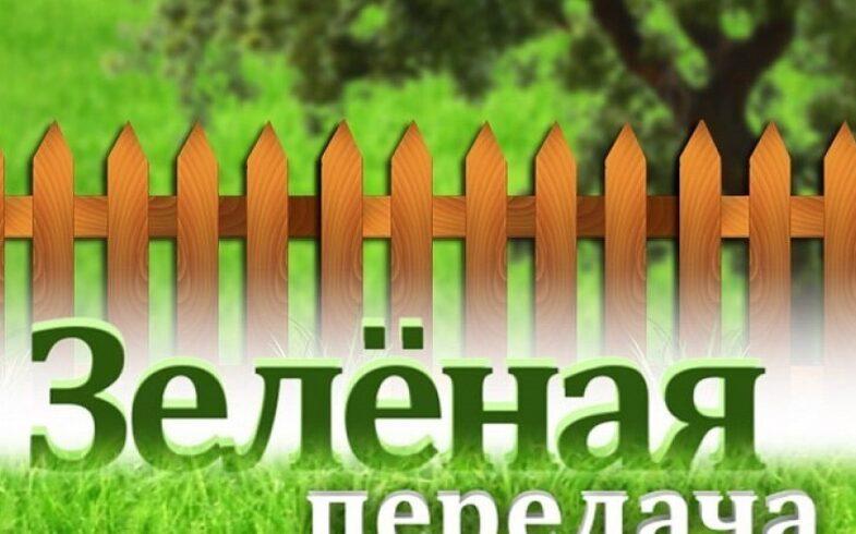 «Удачный сезон» на ОТВ: садоводы могут выиграть полезные призы