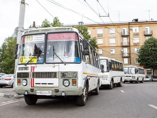 Воронежская областная Дума приняла закон о региональной господдержке садоводов и огородников