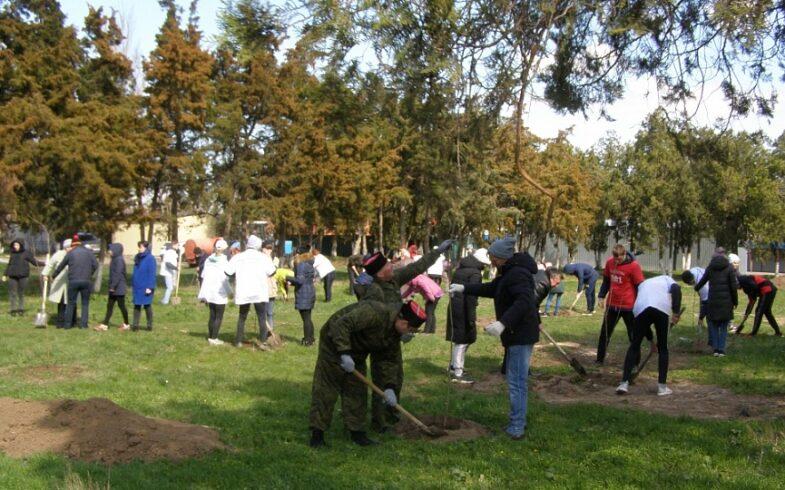 Глава Камчатки присоединился к акции «Сады памяти»