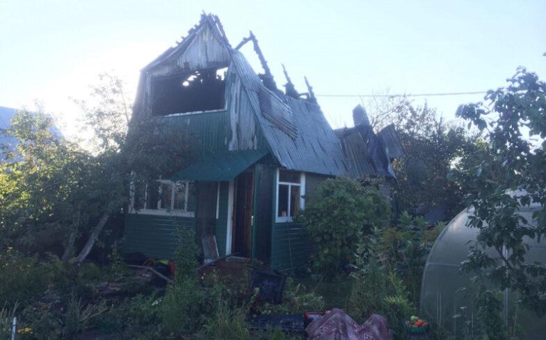 В пожаре на даче спасли собаку и машину