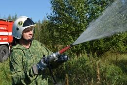 Липецкая область вошла в десятку лучших регионов по итогам пожароопасного сезона