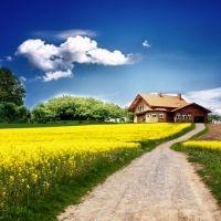 Общественная палата РФ предложила разработать программу господдержки садоводов и огородников