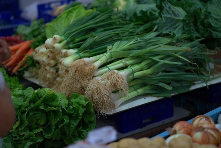 Как выращивать на грядках и в теплицах овощи с низким содержанием нитратов