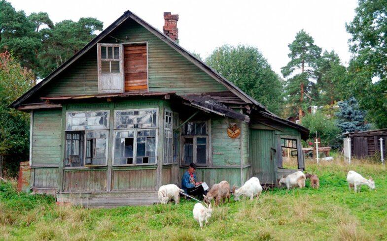 Как оформить в собственность заброшенное строение, дачный участок, гараж