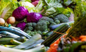 Дачникам рассказали, когда придётся платить налог на продажу овощей